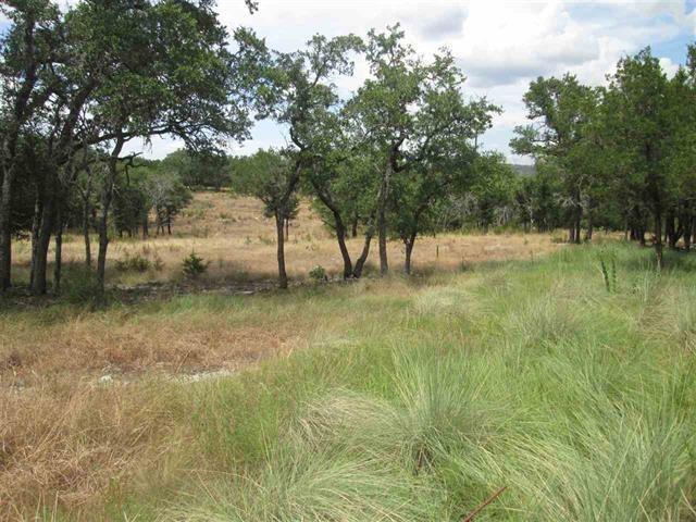 00 Thomas Ridge, Burnet, TX 78611