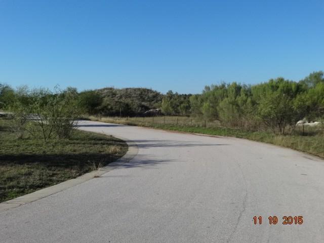 25904 Haynie Flat Rd, Spicewood, TX 78669