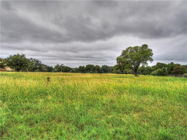 113 Birdstone Ln, Georgetown, TX 78628