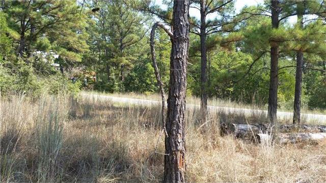 033 Briar Forest, Bastrop, TX 78602
