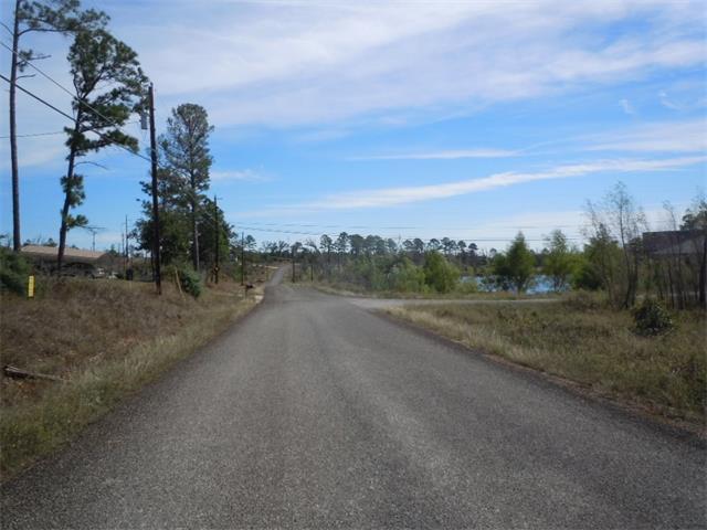 148 Pine Shadows Ln, Bastrop, TX 78602