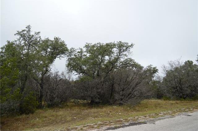 21703 Falcon Ln, Lago Vista, TX 78645