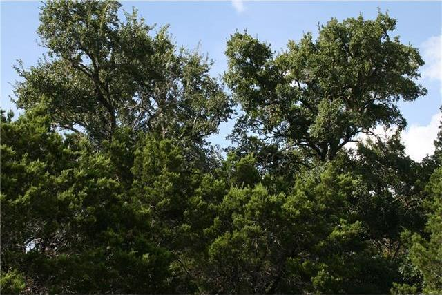 410 Deer Run, Wimberley, TX 78676