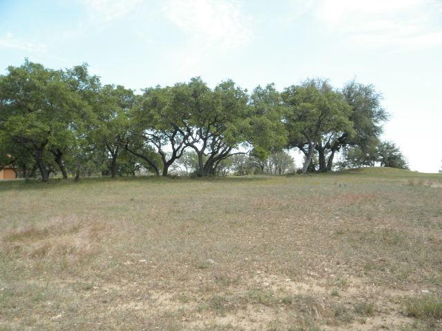 27109 Founders Pl, Spicewood, TX 78669