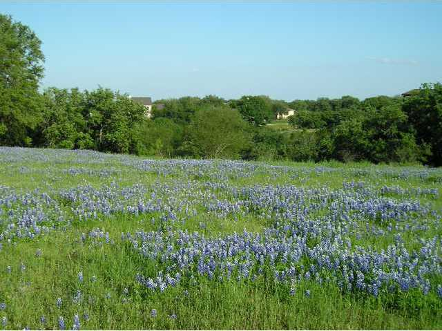26006 Masters Pkwy, Spicewood, TX 78669