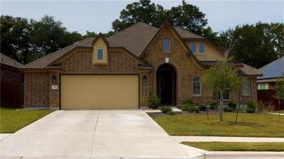 Photo of 309 Lismore St, Hutto, TX 78634