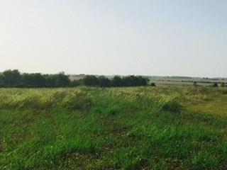 TBD lot 12 County Road 424, Thrall, TX 76578