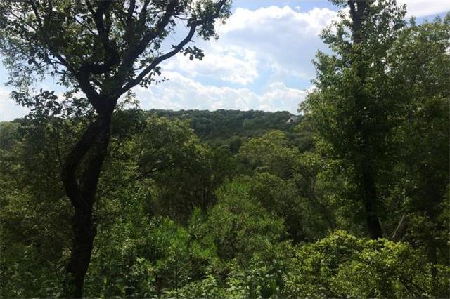 2100 N Oak Canyon Rd, Austin, TX 78746