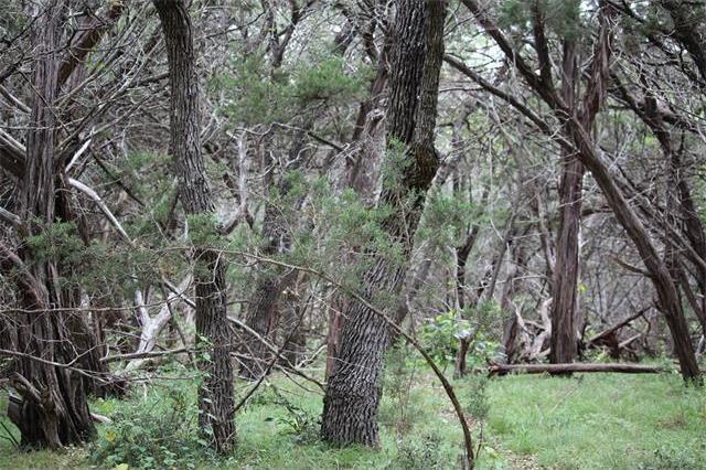 557 & 565 Flatrock Dr, Canyon Lake, TX 78133