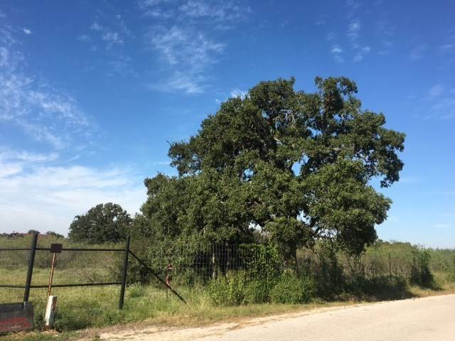 Tract 2 Cr 491, Coupland, TX 78615