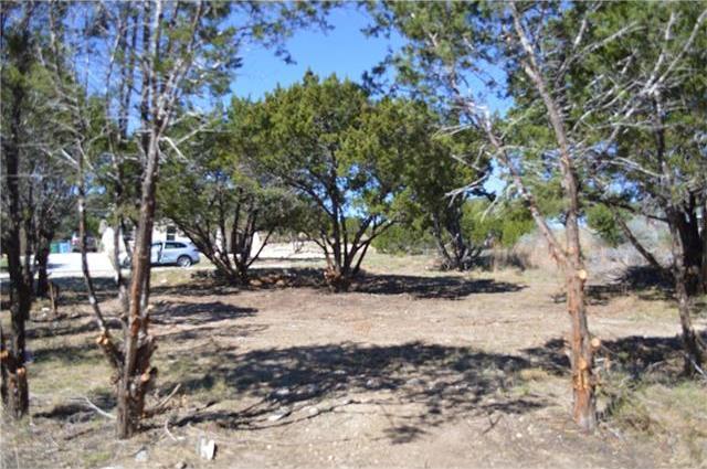 2909 Davis Cv, Lago Vista, TX 78645
