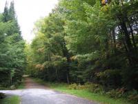 00 Brown Tract Road, Thendara, NY 13472