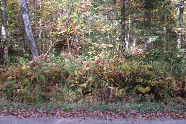 Okara Road East, Thendara, NY 13472