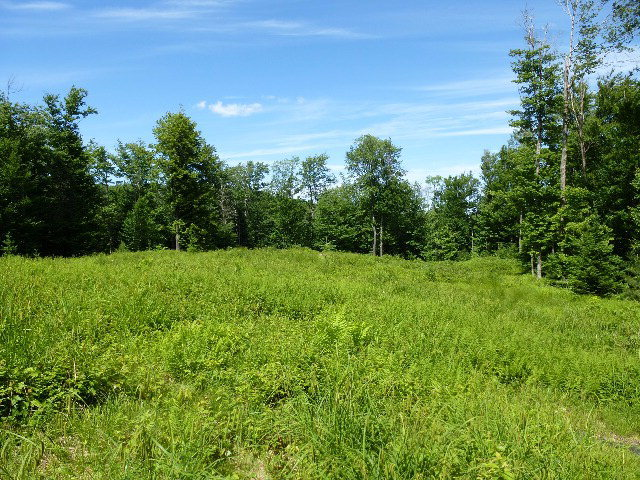 Lots 1 And 4 Smith Heights Subdivision, Thendara, NY 13472