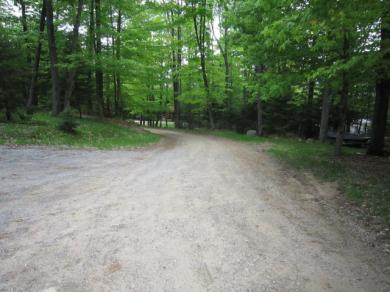 Long View West, Old Forge, NY 13420