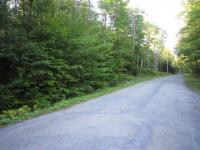 Twitchell Rd, Big Moose, NY 13331