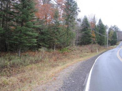 Big Moose Rd, Big Moose, NY 13331