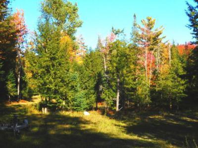 Photo of 17 Jasper Trail, Inlet, NY 13360