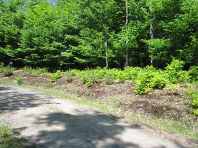 Evans Road, Inlet, NY 13360