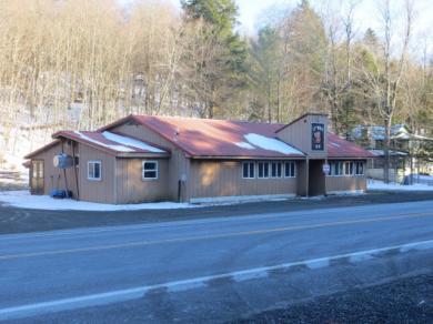 12968 Nys Route 28, Woodgate, NY 13494