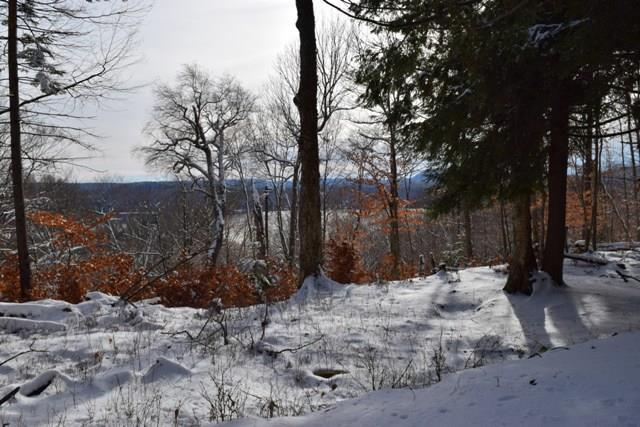 130 Palisades Rd East, Old Forge, NY 13420