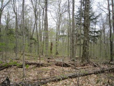 4.1 Fulton House Spur #2, Old Forge, NY 13420