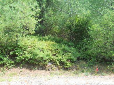 Heathfeild Park Rd., Long Lake, NY 12847