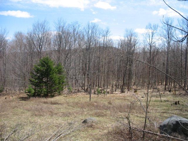 vacant Nys Rte 28 30, Indian Lake, NY 12842