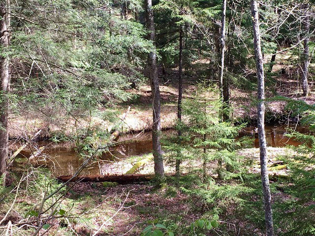 00 South Shore Road, Old Forge, NY 13420