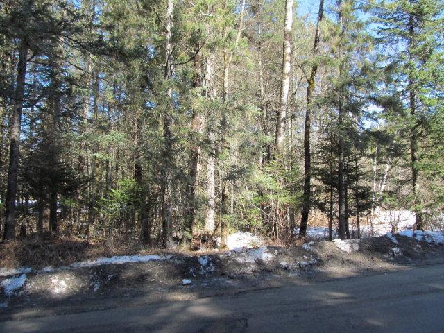Lake View Drive, Indian Lake, NY 12842