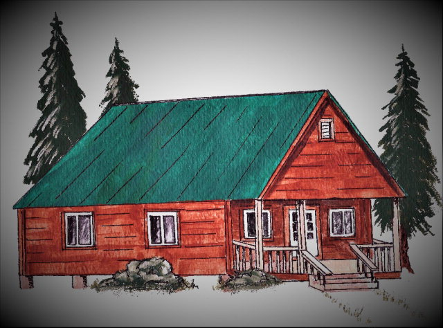 Brand New Adirondack Style Cabin Built Just For You! - Forestport NY