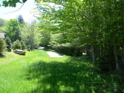 Photo of South Shore Road, Old Forge, NY 13420