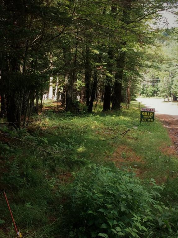 1617 Adams Park Way, Long Lake, NY 12847