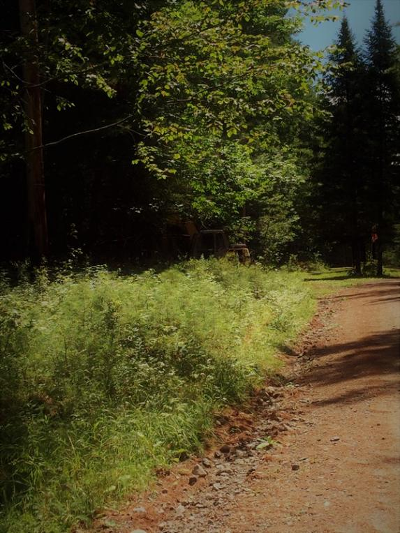20 Adams Park Way, Long Lake, NY 12847