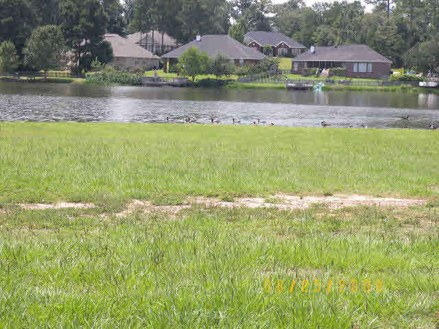 Edgewater Circle, Loxley, AL 36551
