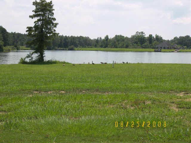 0 Edgewater Circle, Loxley, AL 36551