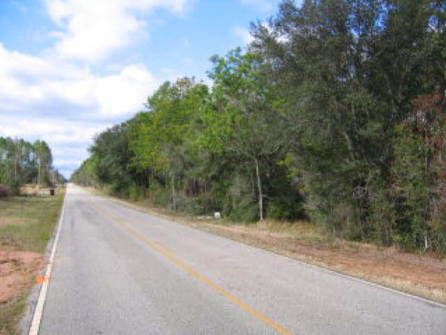 24577 County Road 38, Elsanor, AL 36580