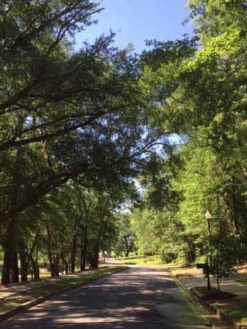 8 Summer Lake Street, Fairhope, AL 36532