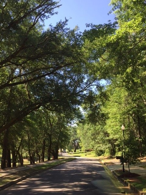 59 Summer Lake Street, Fairhope, AL 36532