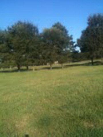 Olde Park Rd, Gulf Shores, AL 36542