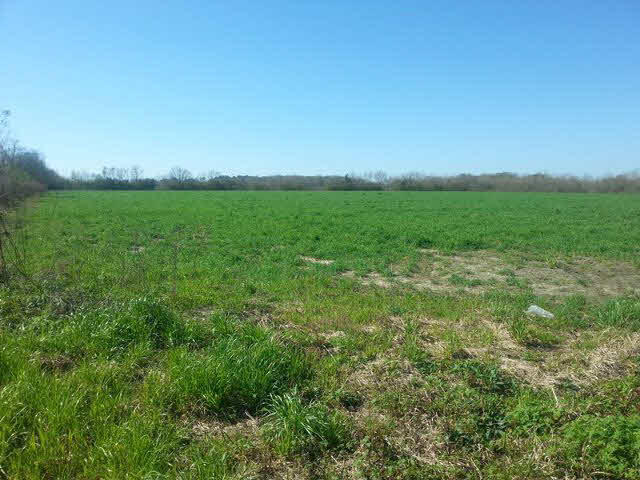 17324 So County Road 12, Foley, AL 36535