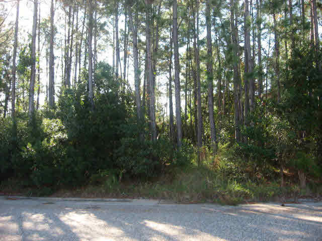241 Office Park Drive, Gulf Shores, AL 36542