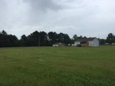 Photo of Eagles Lane, Robertsdale, AL 36567