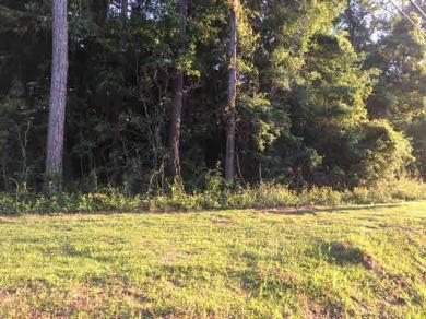 County Road 64, Daphne, AL 36526