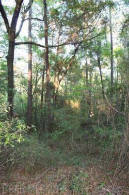 Photo of Browns Landing Road, Seminole, AL 36574