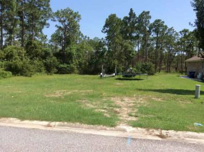 Photo of Tarpon Ln, Orange Beach, AL 36561