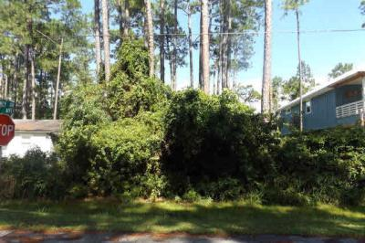 Photo of Gulf Ave, Orange Beach, AL 36561