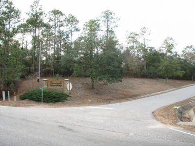 Photo of Us Highway 90, Seminole, AL 36574