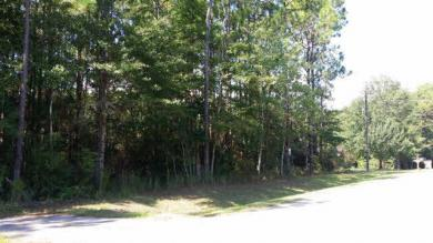 Riverview Road, Coden, AL 36523