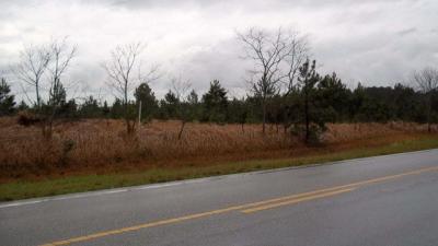 Photo of County Road 87, Elberta, AL 36530